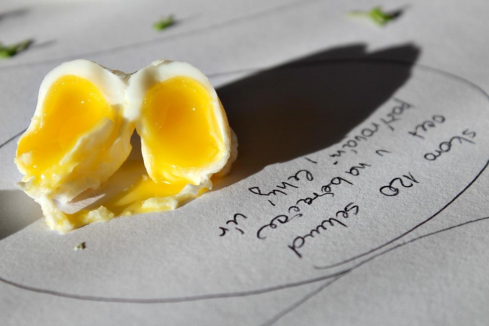 křepelčí vejce ocet