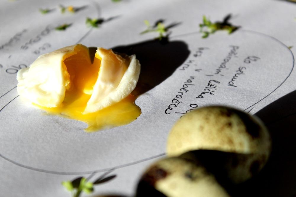 křepelčí vejce - olej