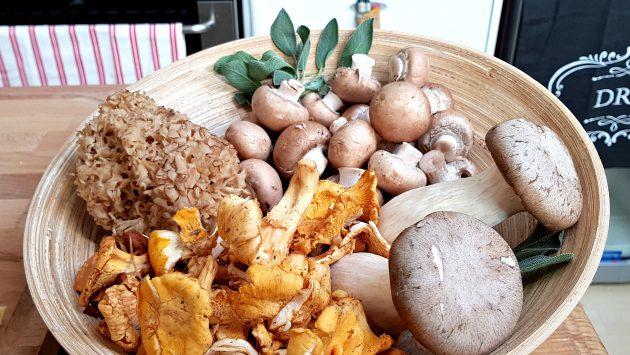 houby 1